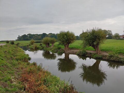 Frome Angling joins Somerset Levels Angling Clubs group.