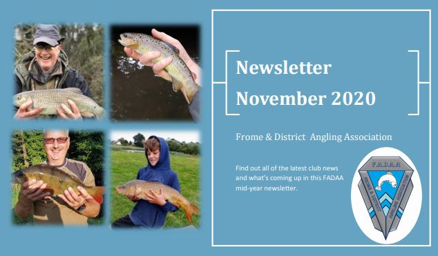 Member's Survey & Newsletter November 2020